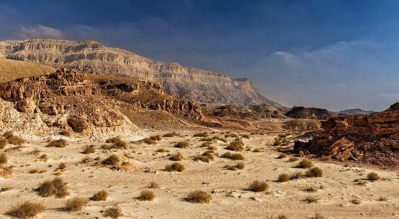 Пустыня Негев Израиль