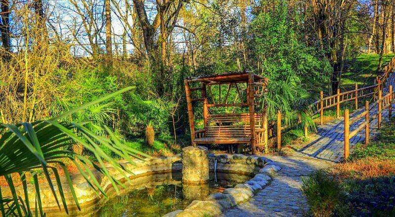 Ботанический сад в Грузии