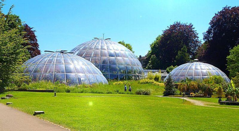 Ботанический сад Швейцария