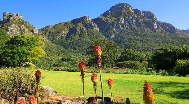 ЮАР ботанический сад Кирстенбош