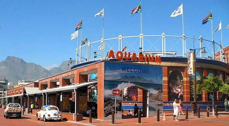 Аквариум двух океанов ЮАР