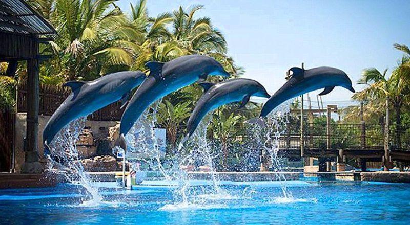 Водный парк Морской мир